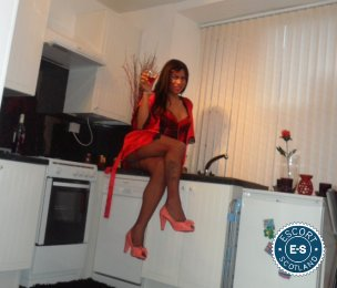 Book a meeting with Karen Brazilian TS in  today