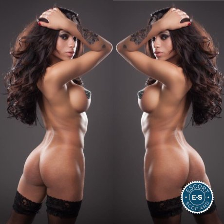 TS Sara Rios is a very popular South American escort in Falkirk Town, Falkirk