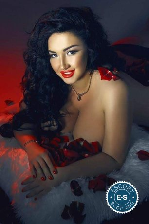 The massage providers in Edinburgh are superb, and Bella is near the top of that list. Be a devil and meet them today.