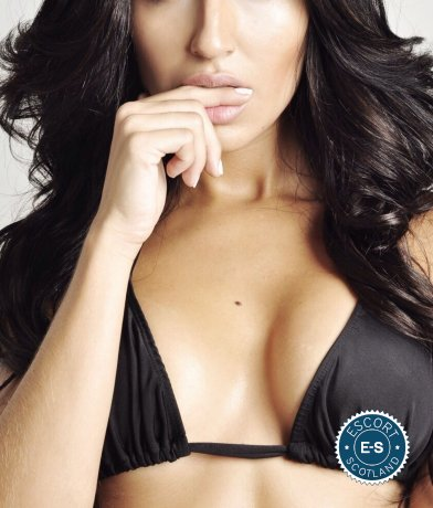 Alex is a hot and horny Brazilian escort from Glasgow City Centre, Glasgow