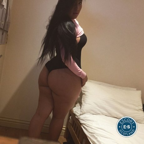 Slut Haley is a very popular Spanish escort in Aberdeen