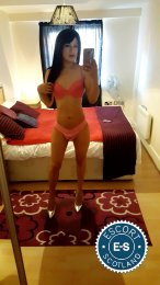 Meet the beautiful Katty Hard TS in Glasgow City Centre  with just one phone call